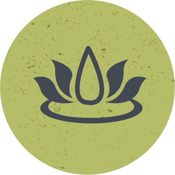 holistic health school and career guide