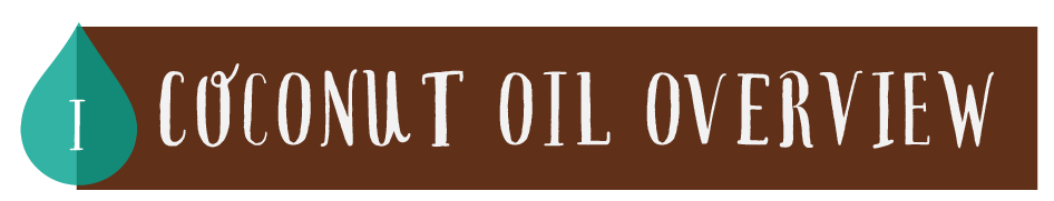 Coconut Oil Overview