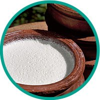 coconut-oil-fermentation