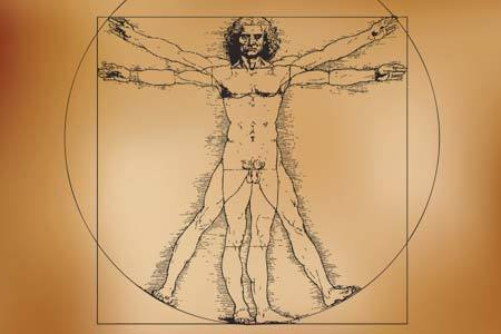 physical-therapy-applied_kinesiology